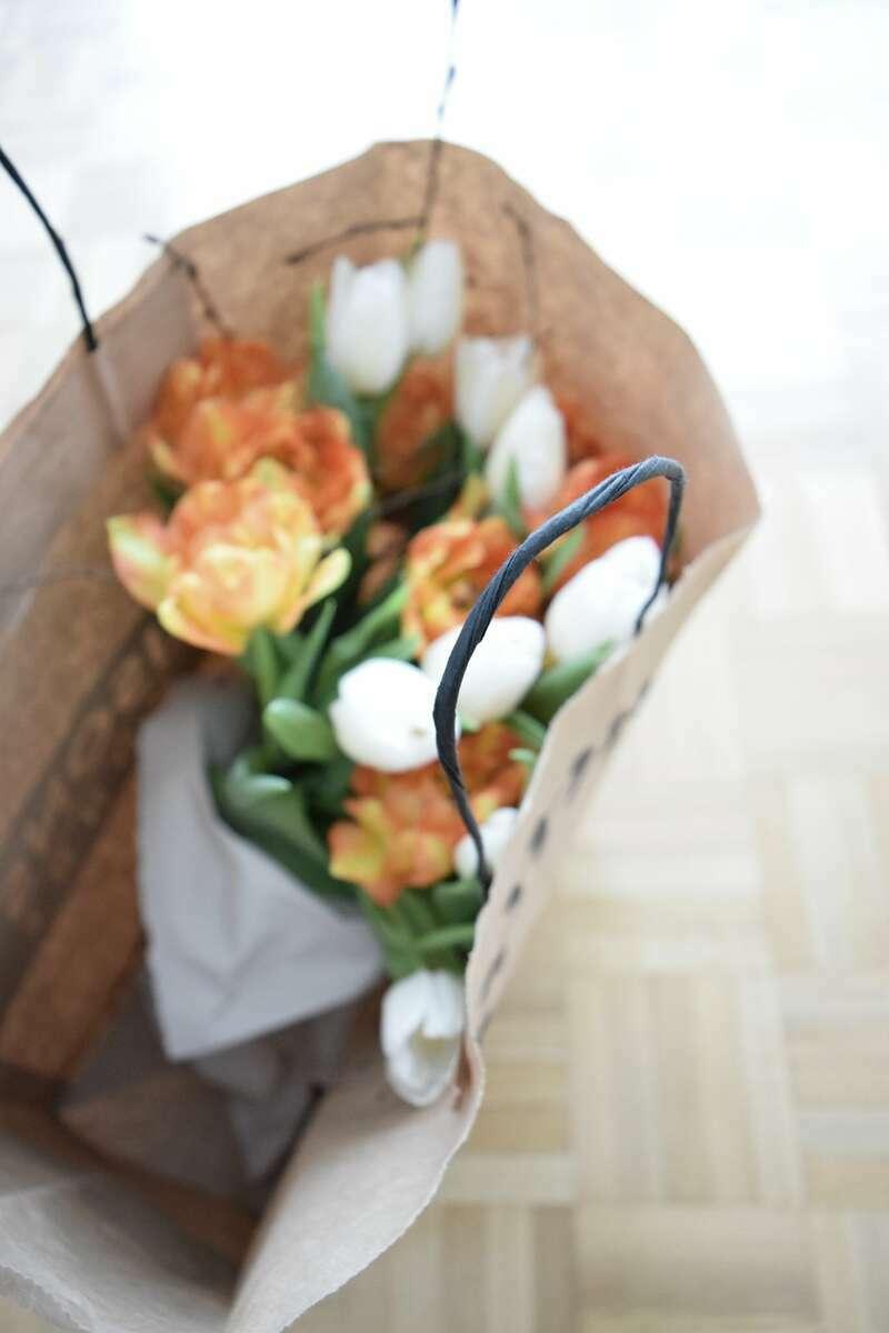 #tulip #spring